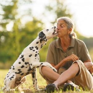 Tierfotografie in Möhlin: Fotoshooting mit Chico einem Dalmatinerjunghund und seiner Besitzerin