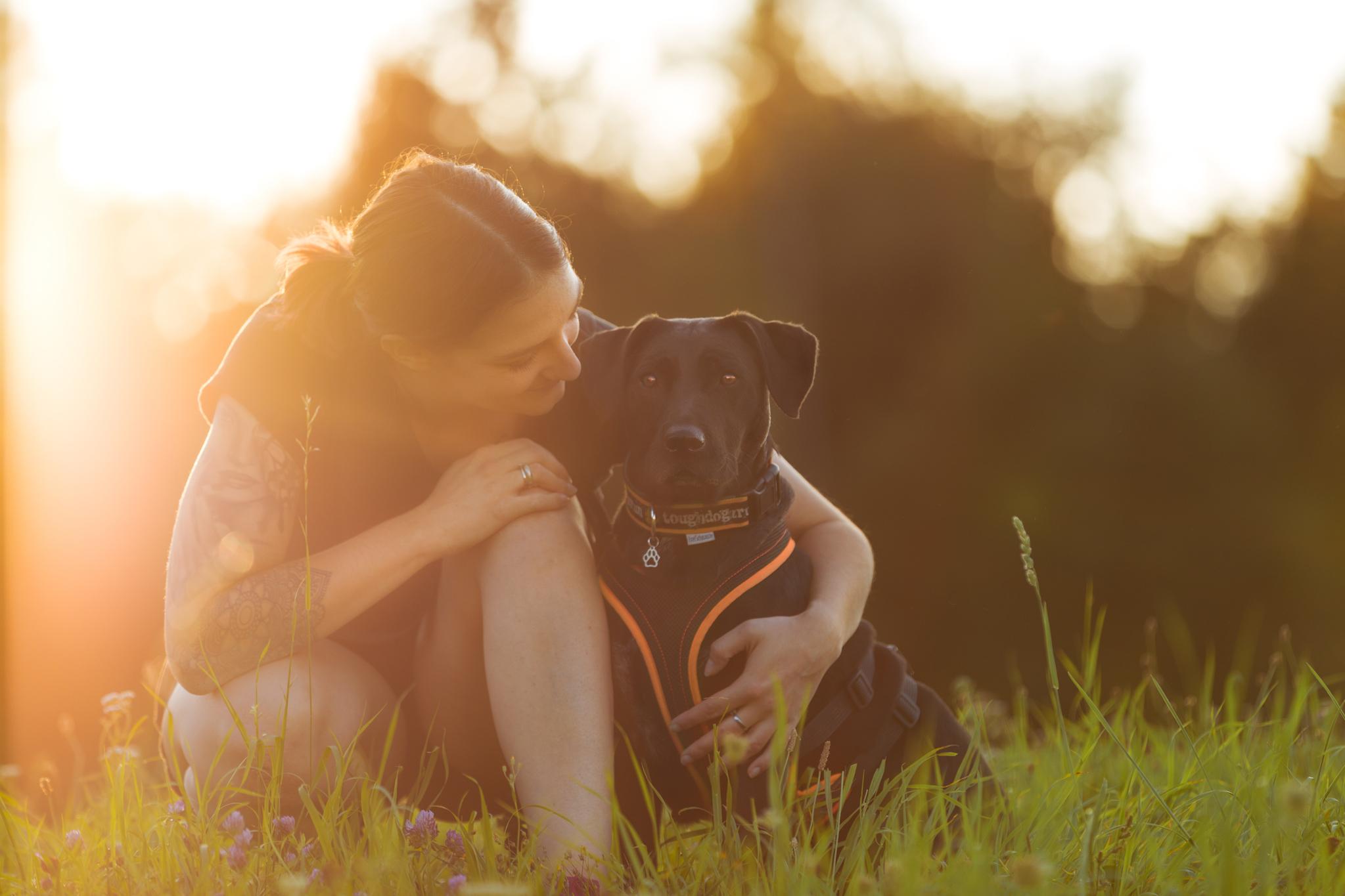 Hundefotoshooting: Fränzi und ihre Ida im Zauberabendlicht