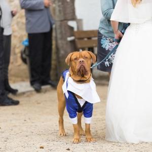 Hochzeit_Alex_Marc-156