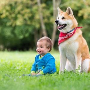 Kind und Hund sitzend im Gras