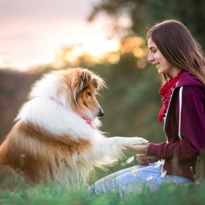 Hundefotografie in der Schweiz: Wenn man zwei beste Freunde fotografiert entstehen solche Momente