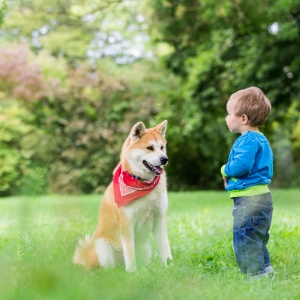 Kind und Hund ein tolles Team