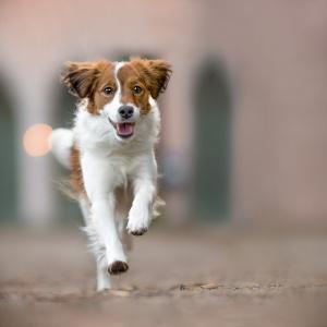 Lucy rennt vor einer Kirche