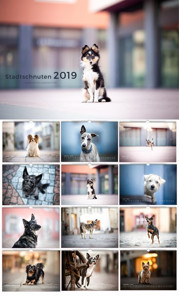 Hundekalender Stadtschnuten 2019