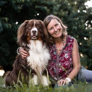 Australian Shepherd Hundefotografie Photo-Passion Schweiz