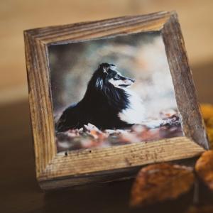 Bild auf Holz Photo-Passion