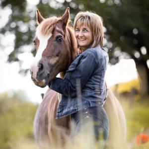 Braunes Pferd und Besitzer