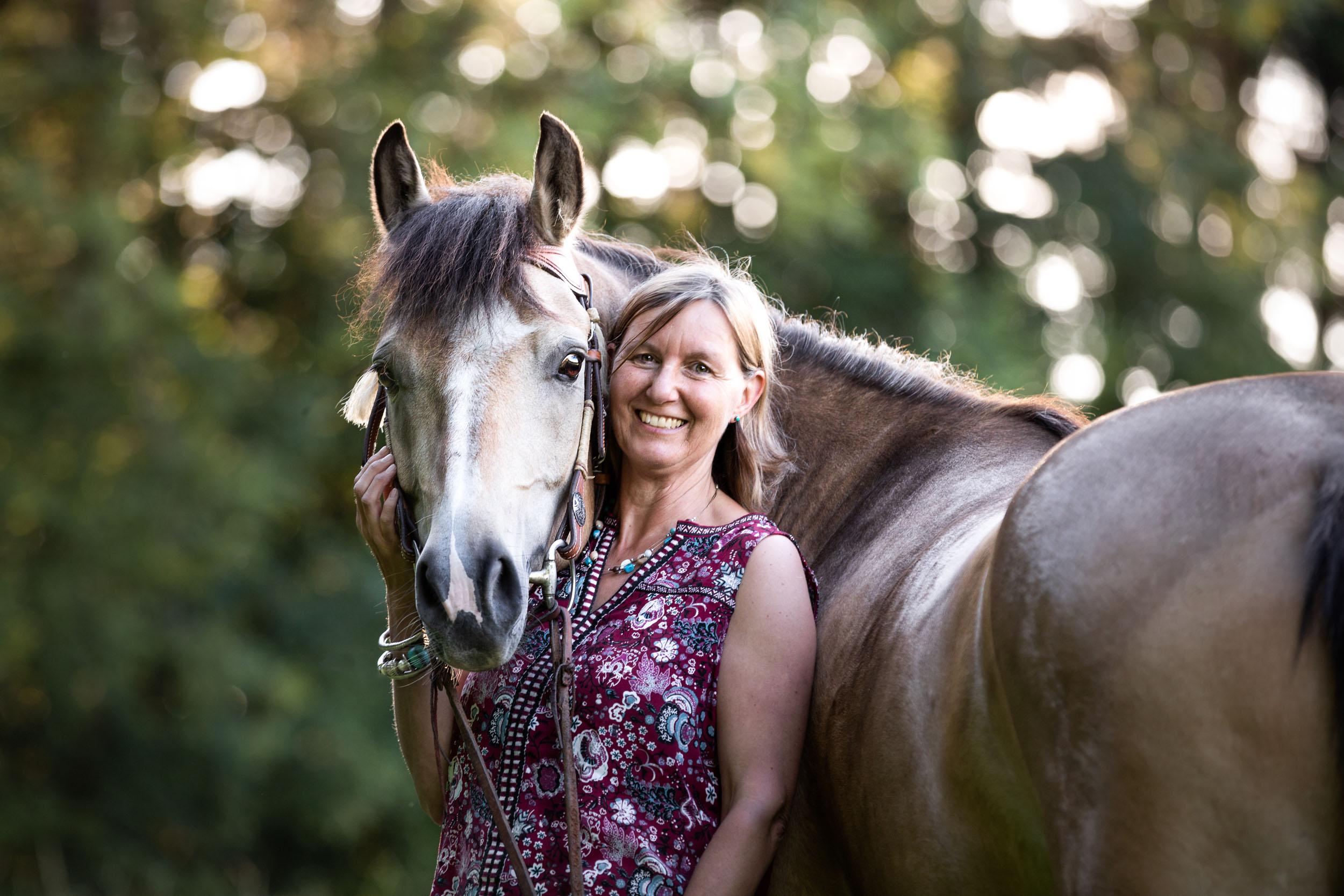 Braunes Pferd und Mensch