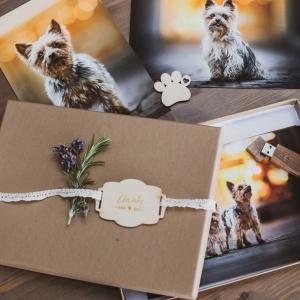 Fotopaket Photo-Passion Hundefotoshooting
