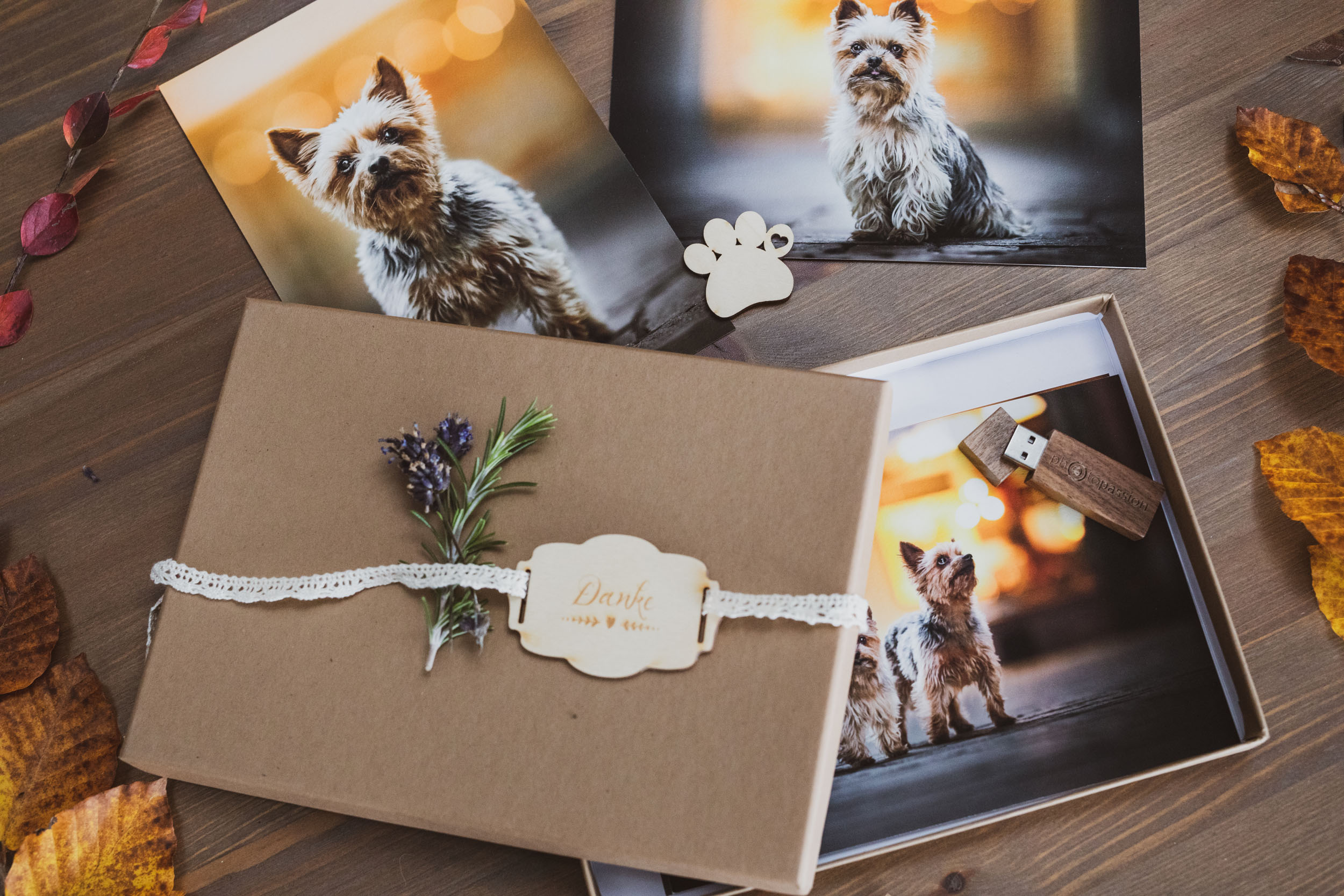 Fotopaket Photo-Passion Hundefotoshooting