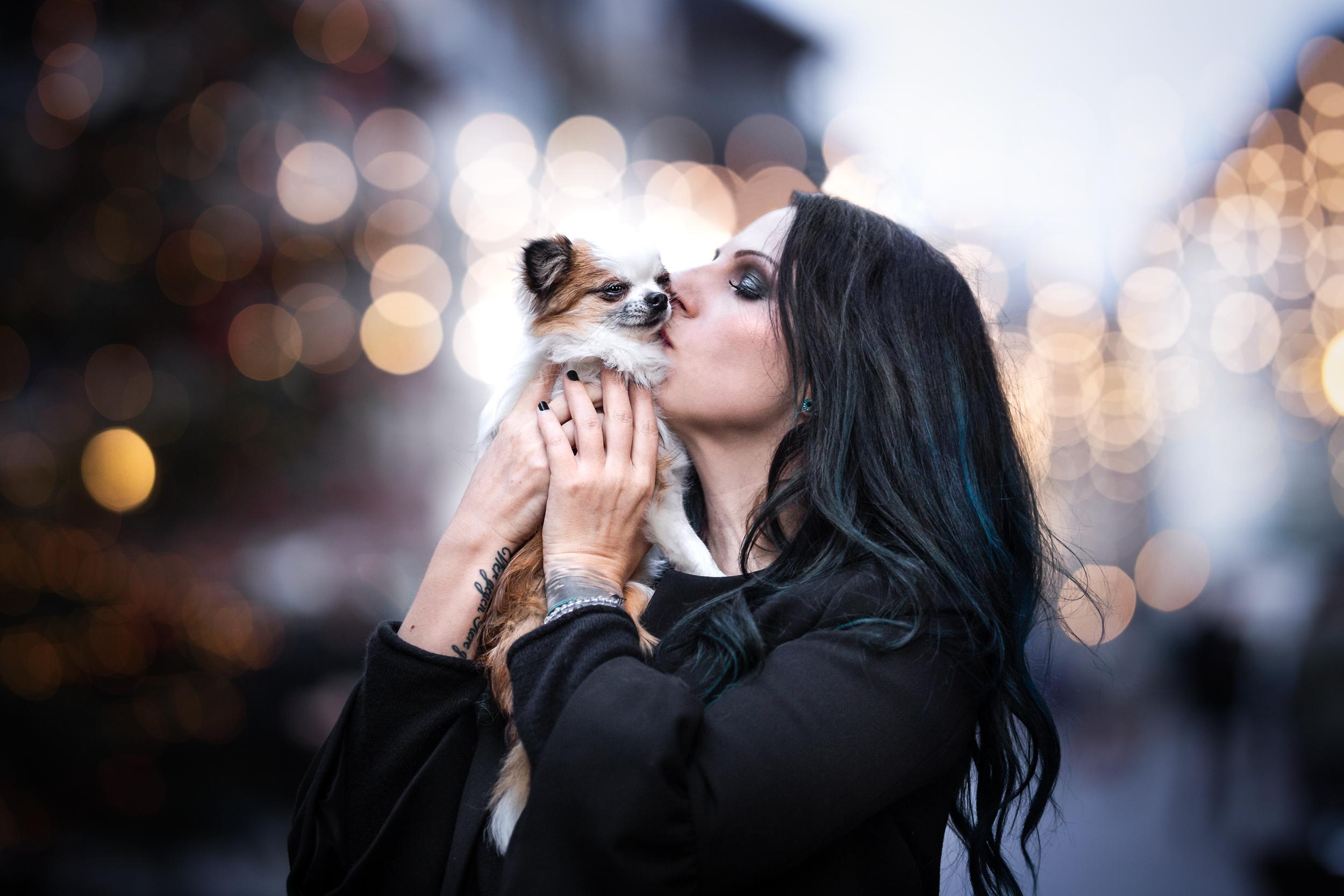 Pures Vertrauen Chihuahua und Lieblingsmensch